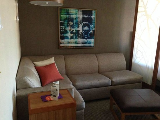 Hyatt Place Chicago-South/University Medical Center: Sofa area in double bed room