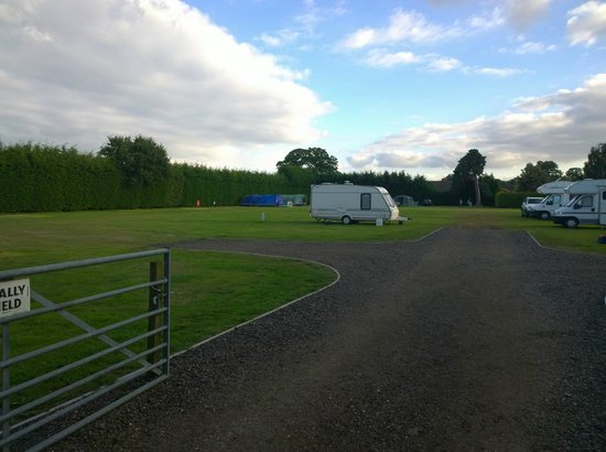 King's Lynn Caravan & Camping Park: Rally Field (quieter)