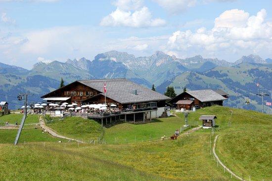 Berghaus Wispile