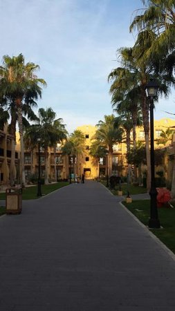 Hotel Riu Santa Fe: Grounds well kept