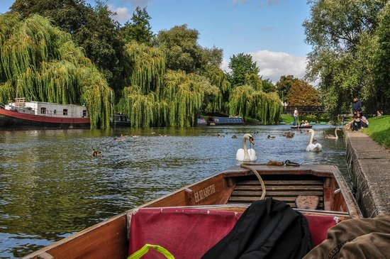 The River Cam: Wonderful spot to moor and have a quick break