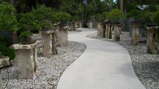 Heathcote Botanical Gardens: Cute bonsai garden