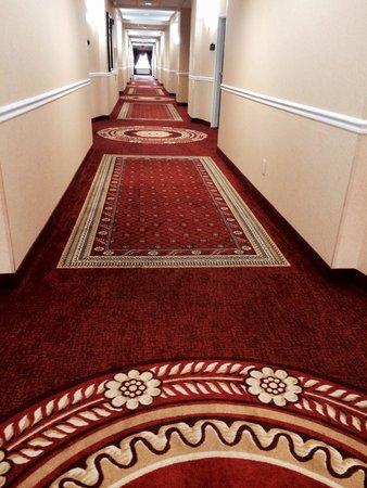 Comfort Suites Indianapolis Airport: Hallway