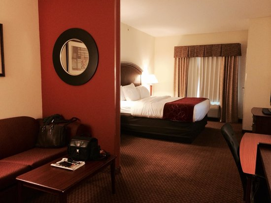 Comfort Suites Indianapolis Airport: Nice sized sofa too