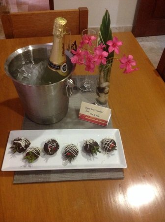 Acanto Boutique Hotel and Condominiums Playa del Carmen Mexico: Surprise your other half with chocolates, wine or Champagne