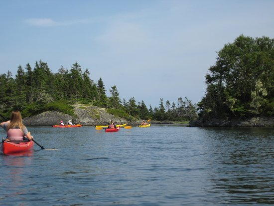 Pleasant Paddling: Headng out on our way to the island