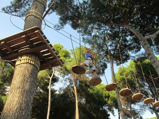 Piscina piccoli picture of valle dell 39 orso torre del - Piscina torre del greco ...