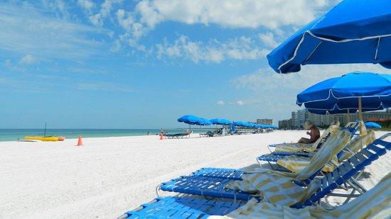 Hilton Marco Island Beach Resort: Ah, the beach