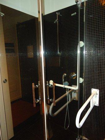 Monopole de la Gare: Ducha del baño