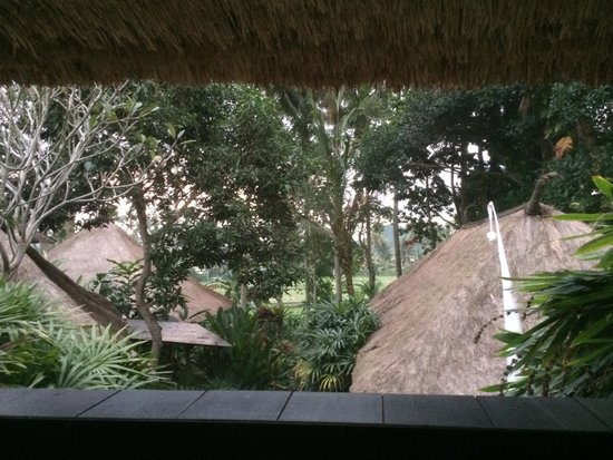 Bali T House: Paddy field, view from bedroom