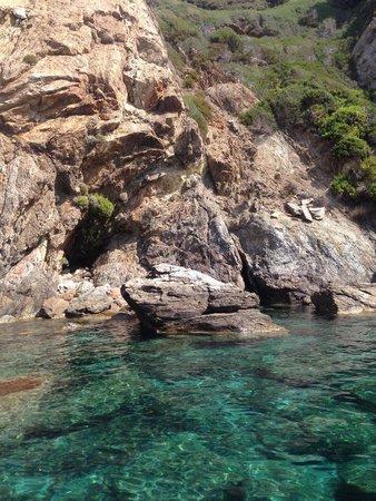 National Park of Port-Cros: Port Cros