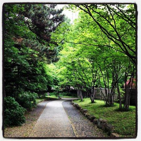 Nakajima Park : 散歩道