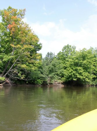 Chippewa Landing: Lazy Manistee River