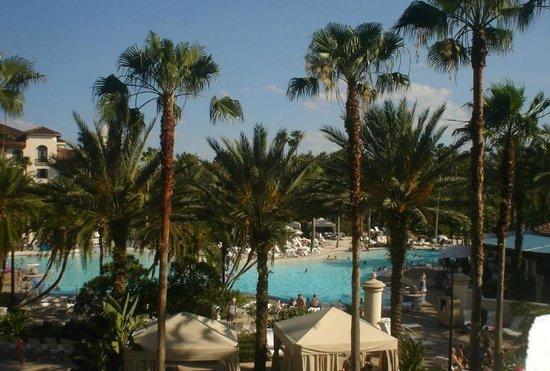 Hard Rock Hotel at Universal Orlando: Piscina