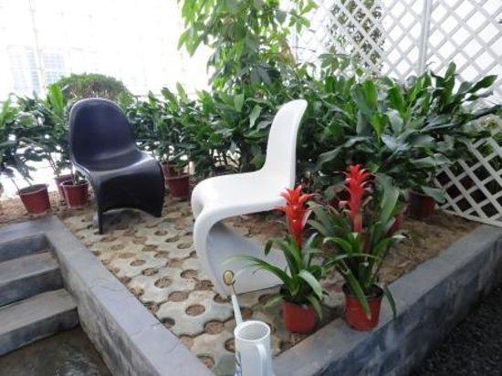 Hotel Kapok Beijing: balcony with courtyard garden
