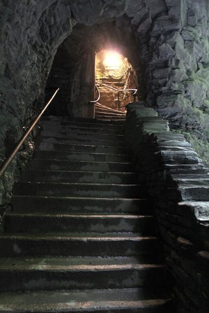 Watkins Glen State Park : Just one of the tunnels
