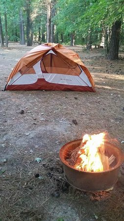 Holly Lake Campsites : Our campsite