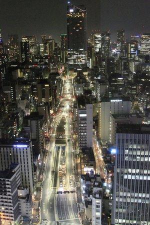 Park Hotel Tokyo: View from 28th Floor Park Hotel of street below.