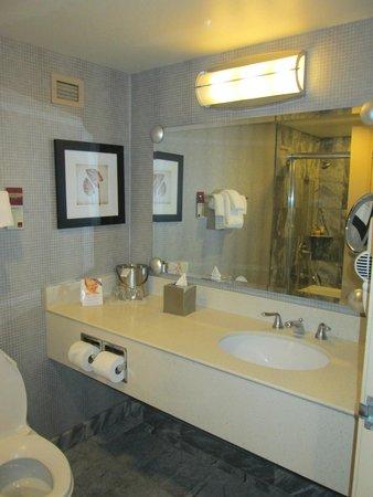 New York - New York Hotel and Casino : baño