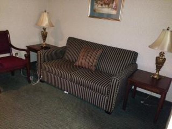 The English Inn of Charlottesville: Sitting area and sleep sofa in the room