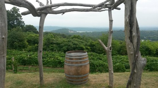 Benmarl Vineyards and Winery: View over looking the Hudson River.