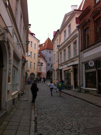 Tallinn Old Town: Street scene