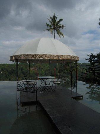 Kupu Kupu Barong Villas and Tree Spa : จากบริเวณห้องอาหาร ล็อบบี้