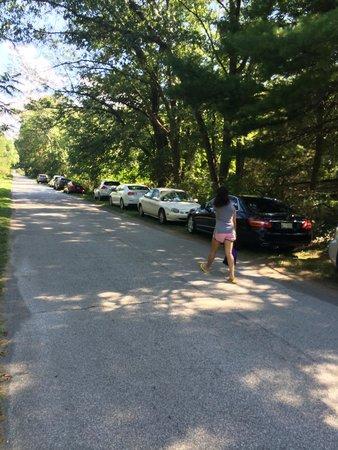 Indiana Dunes National Lakeshore: Parking along side the road, bad idea guys.