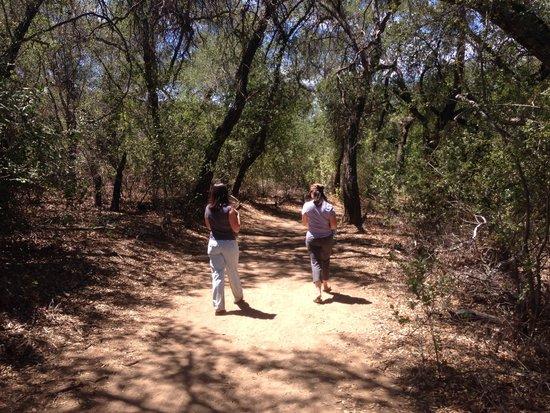 Riviera Oaks Resorts : Hiking trail right next to the resort