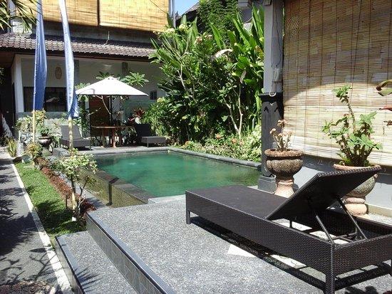Kubu Darma Accommodation: Swimming pool area