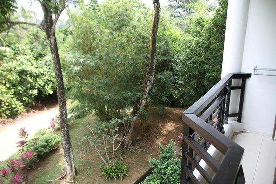 Bintan Lagoon Resort : room view
