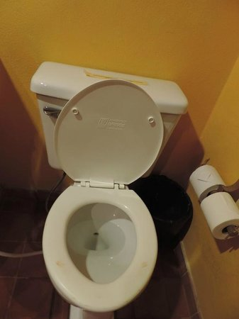 Relax Bay Resort : Relax...les toilettes!