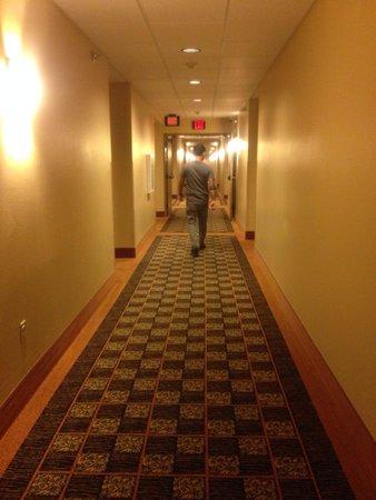AmericInn Hotel & Suites Fargo South — 45th Street: Hallway 3rd floor