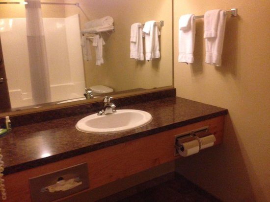 AmericInn Hotel & Suites Fargo South — 45th Street: Clean washroom