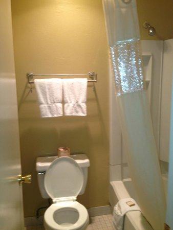 Quality Inn Encinitas Near Legoland: Small bathroom