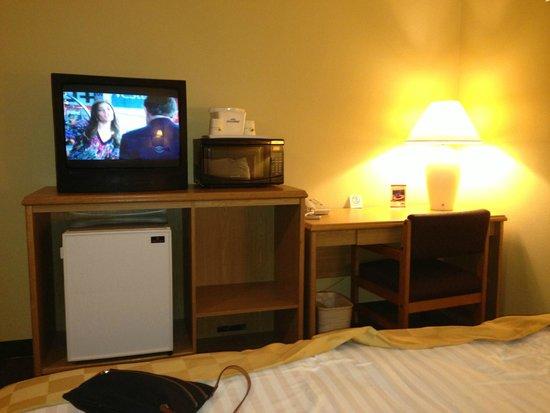 Quality Inn Encinitas Near Legoland: Old TV, microwave and mini-fridge