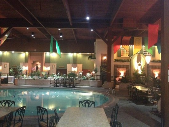 Holiday Inn Perrysburg - French Quarter: More of the pool area