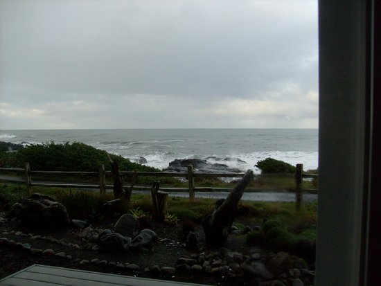 Overleaf Lodge & Spa: View from the room