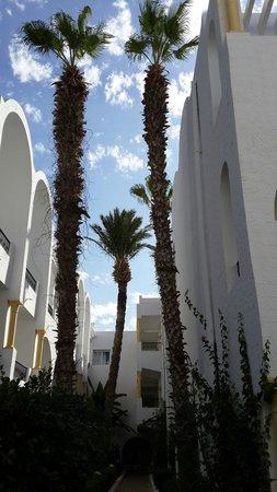Hotel Nesrine: Jardin