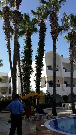 Hotel Nesrine: Piscine