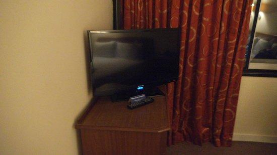 Airport Inn Gatwick: TV