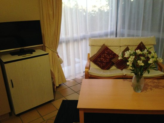 Diamond Guest House : Couch, TV and fridge