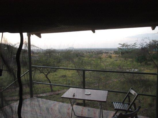 Ikoma Wildcamp: Aussicht von der zelteigenen Terasse durch das Moskitonetz Richtung Osten (Sonnenaufgang)