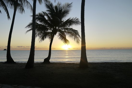 Alamanda Palm Cove by Lancemore : View from patio