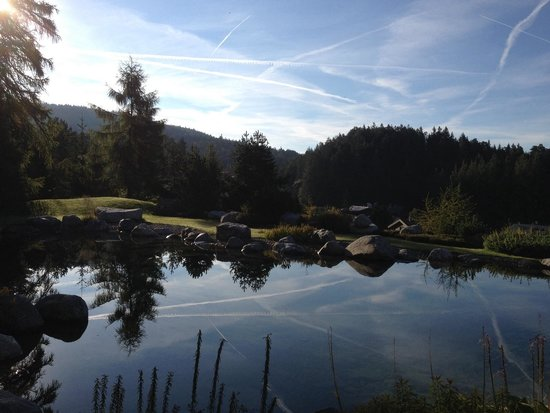 "Hotel Laerchenhof Natur : The "" Badeteig"""