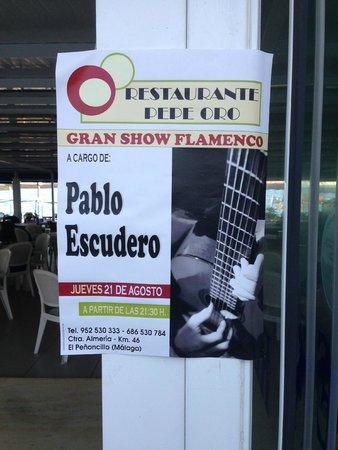 Pepe Oro Bar Restaurant: Great Flamenco