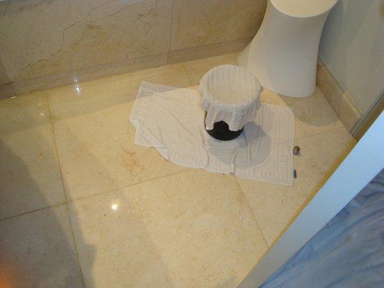 Iberostar Grand Hotel Bavaro: Flooded Bathroom Grand Bavaro.