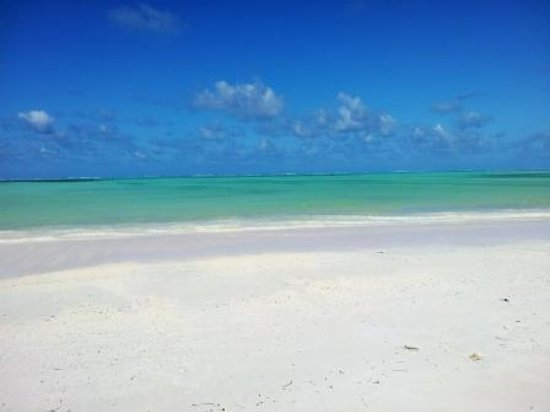 Sun and Seaview Bungalows: Vue sur la plage