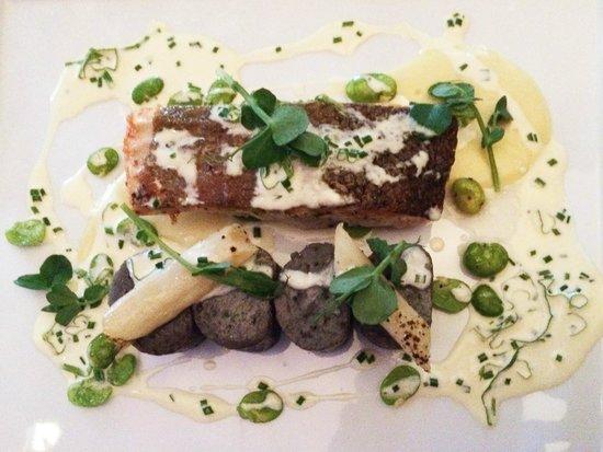 Oxo's Restaurant: Wild Sea Trout