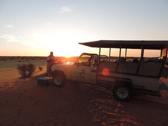 Zebra Kalahari Lodge: Game drive